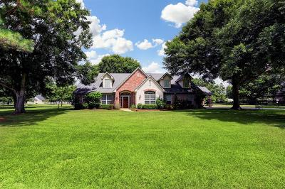 Sealy Single Family Home For Sale: 501 Pecan Grove Road