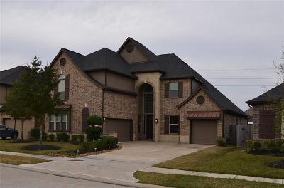 Pearland Single Family Home For Sale: 13389 Shadow Ridge Lane