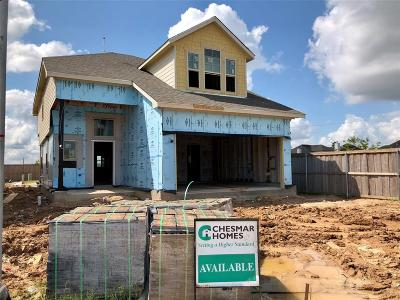 Spring TX Single Family Home For Sale: $253,565