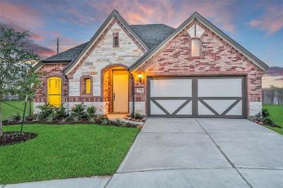 Katy Single Family Home For Sale: 23206 Twilight Oaks Court