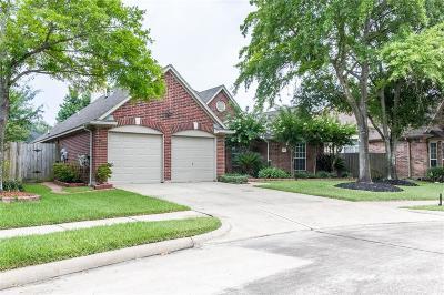 Houston Single Family Home For Sale: 9411 Tarton Way Court