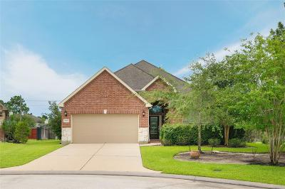 The Woodlands Single Family Home For Sale: 26100 Brickhill Drive