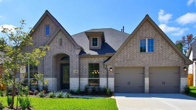 Montgomery Single Family Home For Sale: 141 Kit Fox Court