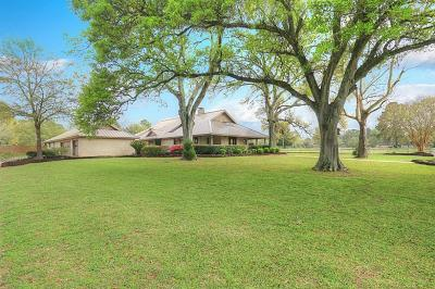 Tomball Single Family Home For Sale: 16135 Lutheran School Road