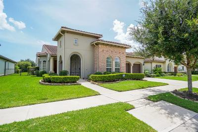 Sugar Land Single Family Home For Sale: 4331 Horizon View Circle