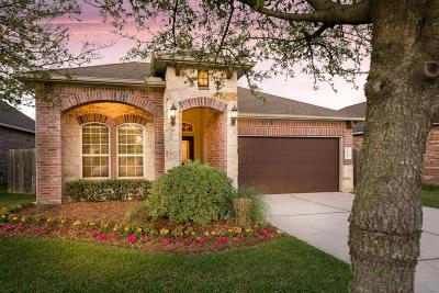 Tomball Single Family Home For Sale: 18514 Bristol Point Lane