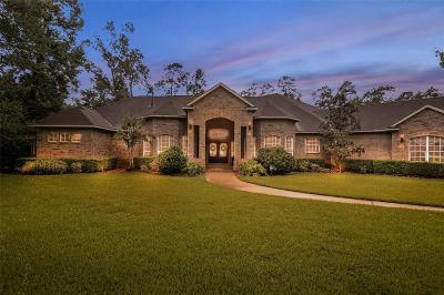 Magnolia Single Family Home For Sale: 9627 Azure Lake Drive