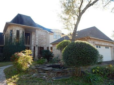 Houston Single Family Home For Sale: 12215 Drakemill Drive