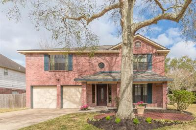 Friendswood Single Family Home For Sale: 1901 San Jose Street