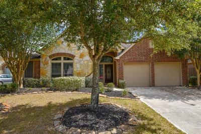 Katy Single Family Home For Sale: 26203 Basil View Lane