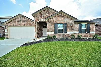 Richmond Single Family Home For Sale: 7010 Montclair Pines Court