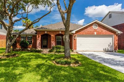 Sugar Land Single Family Home For Sale: 2615 Pine Shadows Drive