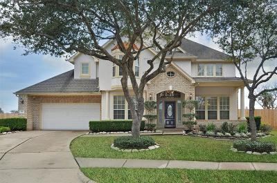 Sugar Land Single Family Home For Sale: 4002 Angel Springs Drive