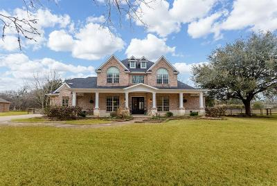 Fulshear Single Family Home For Sale: 32523 Waterworth Court
