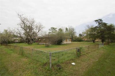 Houston Single Family Home For Sale: 2101 Maximilian Street