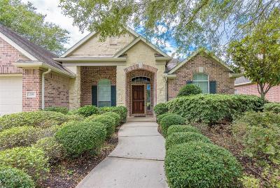 League City Single Family Home For Sale: 238 Farnworth Circle