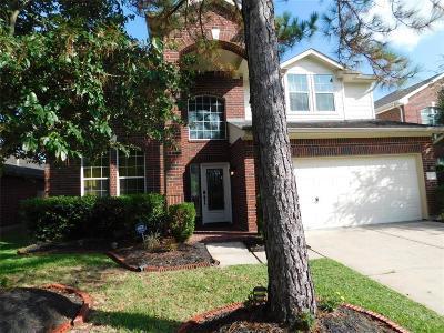 Houston Single Family Home For Sale: 9222 Comanche Peak Lane
