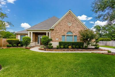 Tomball Single Family Home For Sale: 12002 Hodges Grove Lane