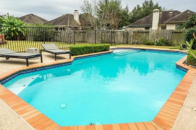 Houston Single Family Home For Sale: 12419 Shadow Cove