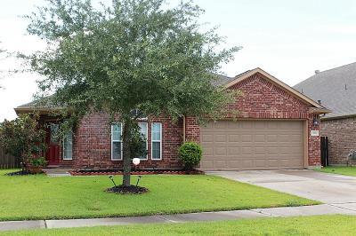 Rosenberg Single Family Home For Sale: 2003 Queensroch