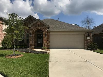 New Caney Single Family Home For Sale: 18706 Langley Pond Lane