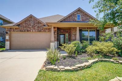 Tomball Single Family Home For Sale: 21211 Knight Quest Drive