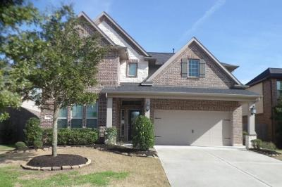 Sugar Land Single Family Home For Sale: 4939 Hickory Branch Lane