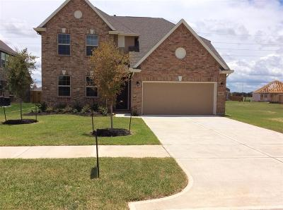 Fort Bend County Single Family Home For Sale: 6119 Wayne Way