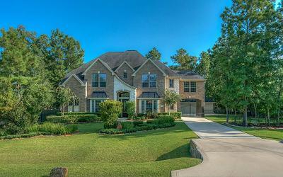 Conroe Single Family Home For Sale: 10108 Aspen Star Court