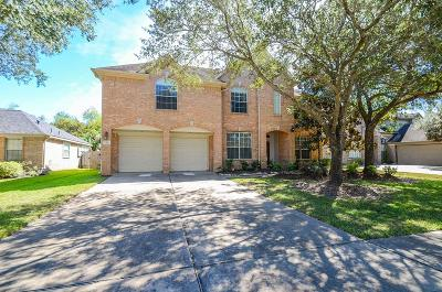 Sugar Land Single Family Home For Sale: 1331 Tahoe Valley Lane