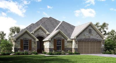 League City Single Family Home For Sale: 2612 Granite Shadow Lane