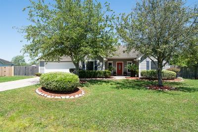 Rosharon Single Family Home For Sale: 17027 Lake Ridge Circle
