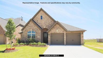 Pearland Single Family Home For Sale: 3204 Primrose Canyon Lane
