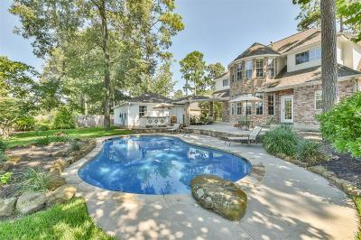 Tomball Single Family Home For Sale: 14218 Spring Pines Drive