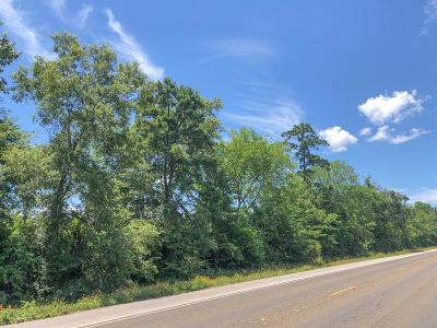 Country Home/Acreage For Sale: 00 Hwy 146