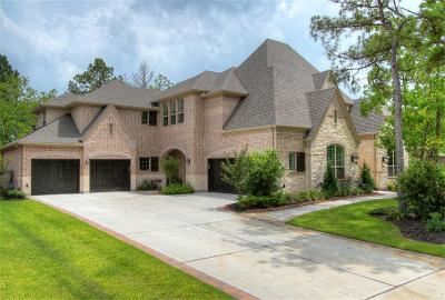Montgomery Single Family Home For Sale: 196 Spyglass Park Loop