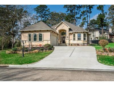 Montgomery Single Family Home For Sale: 220 Blue Hill Drive