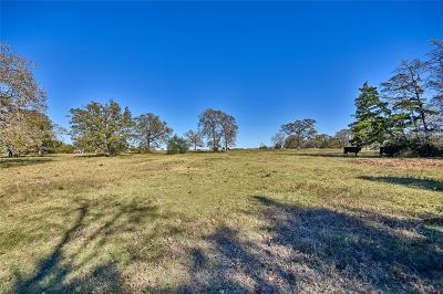 New Ulm Farm & Ranch For Sale: 000000 Fm 1094
