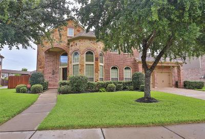 Fort Bend County Single Family Home For Sale: 13127 Old Windmill Drive