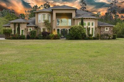 Spring Single Family Home For Sale: 6015 N Ossineke Drive