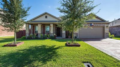 Pearland Single Family Home For Sale: 3914 Anzac Drive