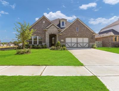 Conroe Single Family Home For Sale: 10025 Preserve Way