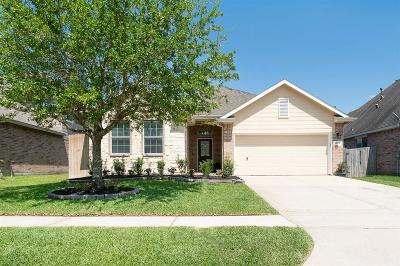 Alvin Single Family Home For Sale: 4704 High Creek Court
