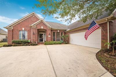 Baytown Single Family Home For Sale: 8002 Aspen Court