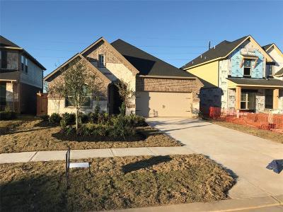 Fulshear Single Family Home For Sale: 28318 Calm Brook Lane