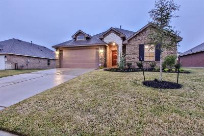 Atascocita Single Family Home For Sale: 18031 Van Berkel Lane