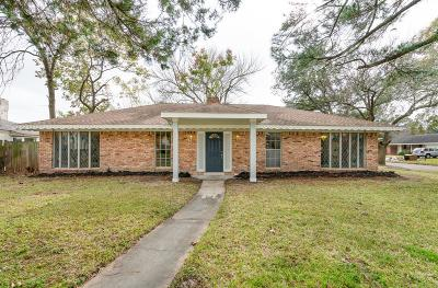 Houston Single Family Home For Sale: 8202 Gulf Spring Lane