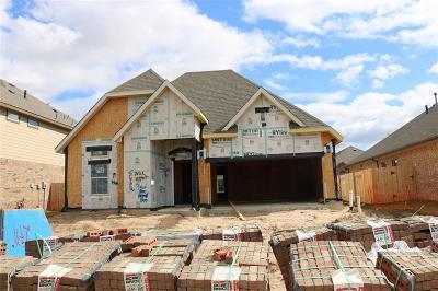 Pearland Single Family Home For Sale: 2709 S Galveston Avenue
