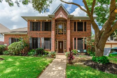 Pearland Single Family Home For Sale: 1407 Pine Meadow Court