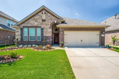 Tomball Single Family Home For Sale: 9110 Newcroft Court